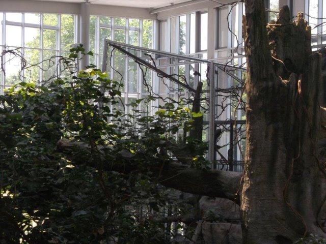 Tiergehege im Zoo Karlsruhe Tullabad